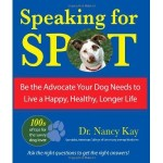 Kay - Speaking for Spot