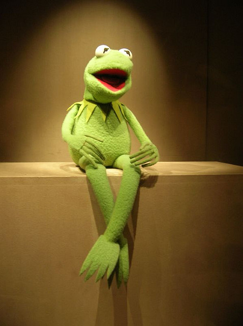 """Never ignore a gut feeling but never believe it's enough"" Kermit the frog (Photo by Kevin Galens, Flickr CC"